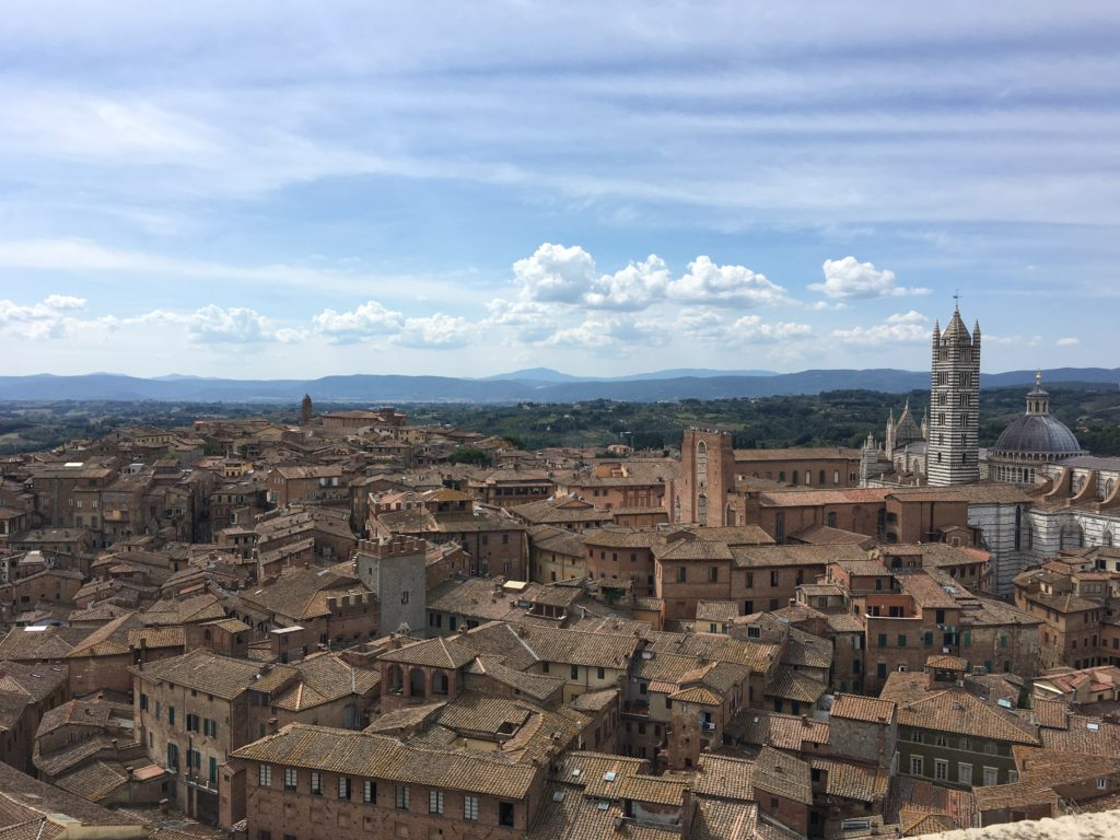 View of Siena from Torre del Mangia