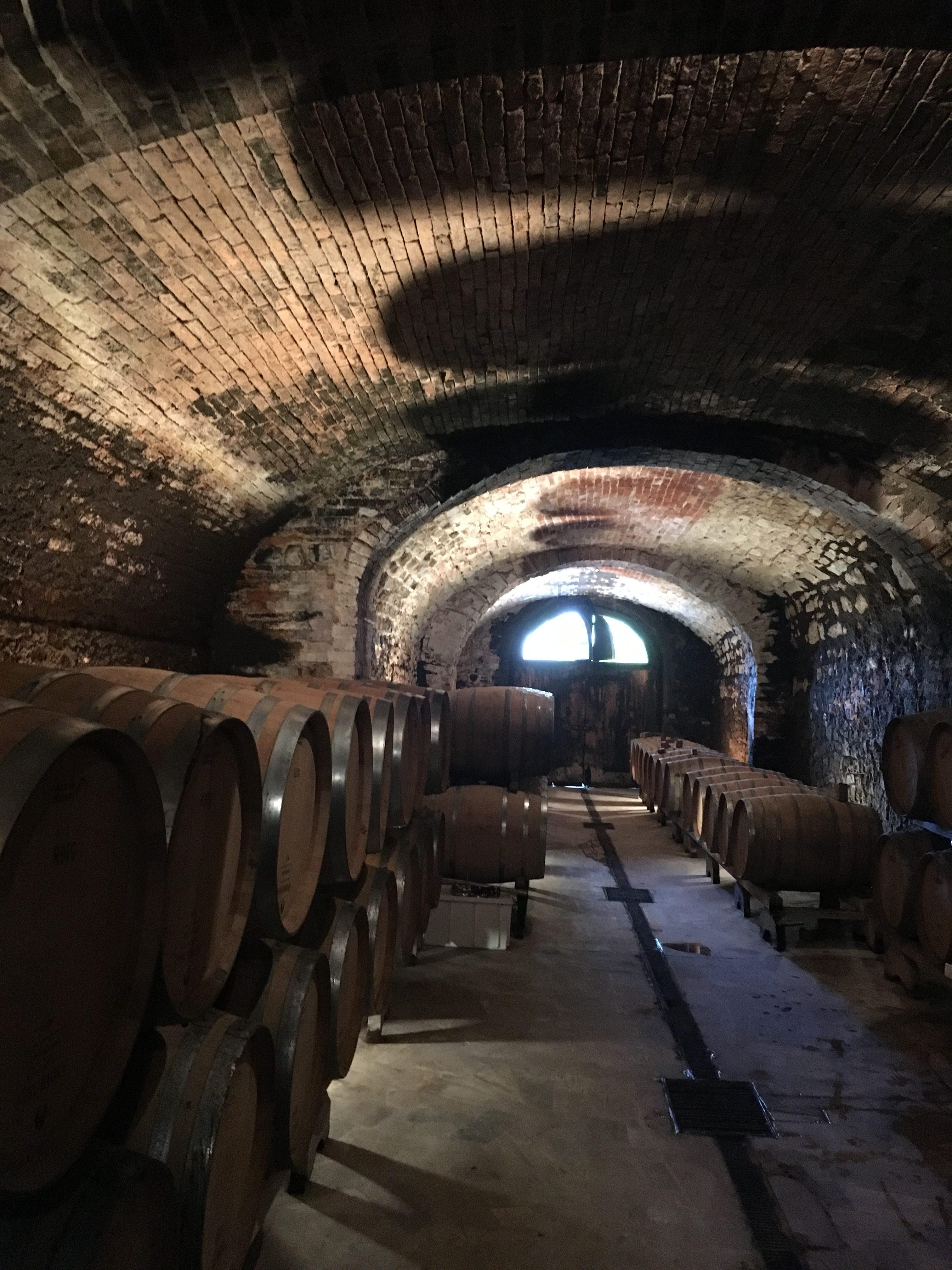 Wine Barrels Underground