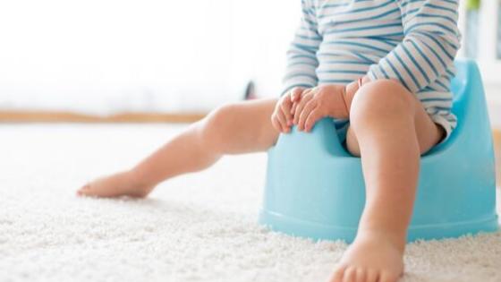 Potty Training: Tips & Gear
