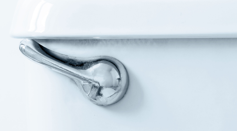 A silver toilet handle up close