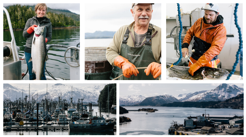 A collage of photos.  One woman holding a large fish.  An older man holding a rope.  A young man filleting a fish.  A dock of fishing boats.  And an Alaskan Bay